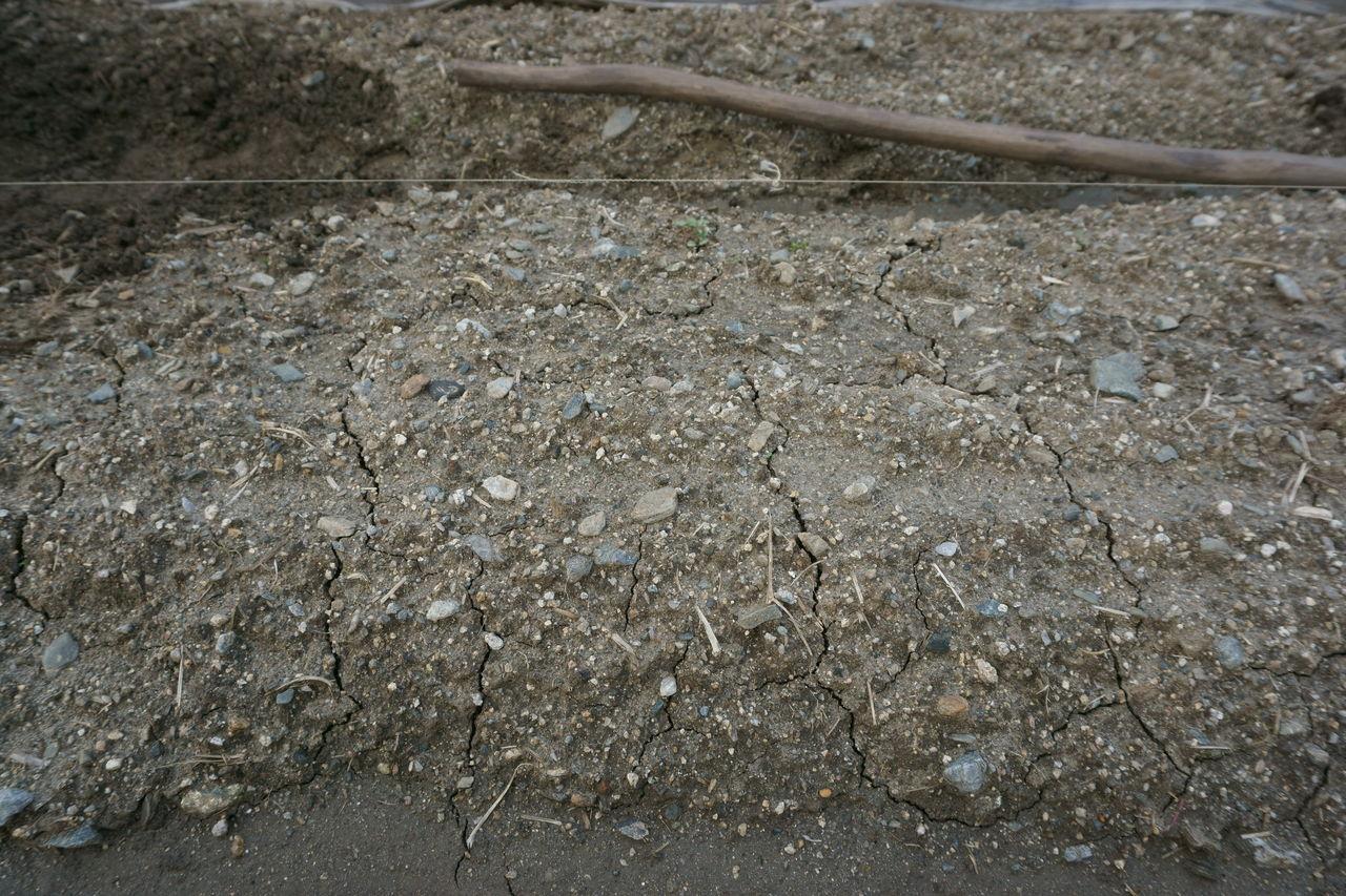 <無農薬・有機栽培いろはにほへと>:山隈じゃがいも床 石拾い均し