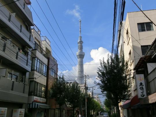 skytree (1)