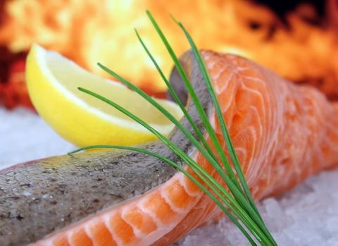 salmon-1238667