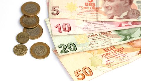 トルコリラ貨幣