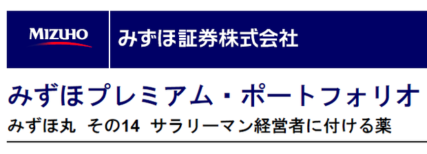 mizuho-premium-portfolio