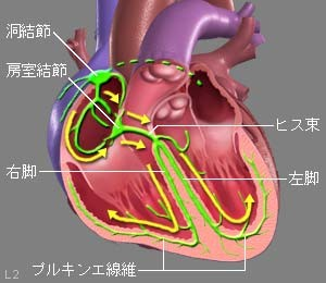 ablation-surgery