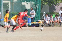 DSC_8384