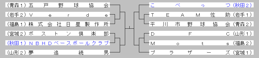 2014nagasawa