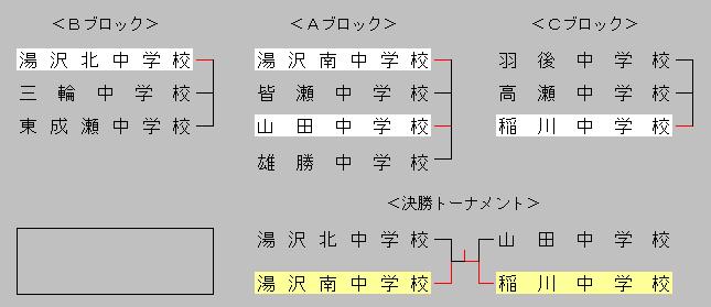 2013akiyuzawa