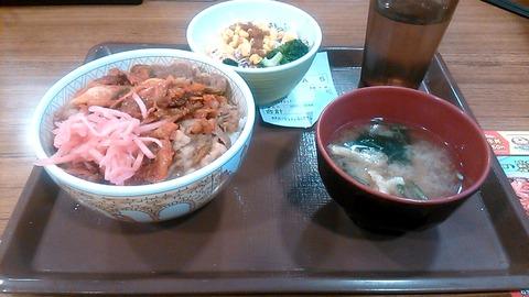キムチネギ牛丼サラダセット