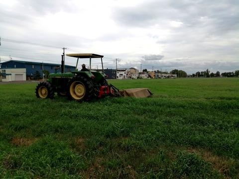 近藤牧場牧草地_20210829
