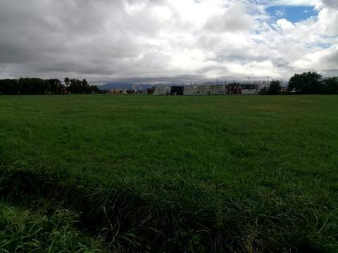 近藤牧場牧草地_20210826
