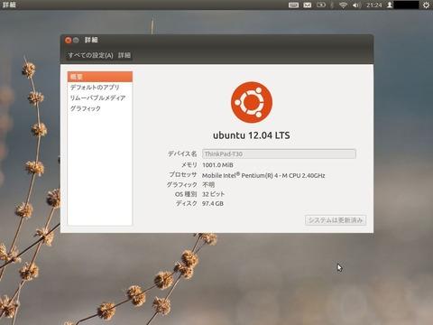 Ubuntu12.04@T30(2.4GHz)