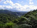 ワイマング 景色