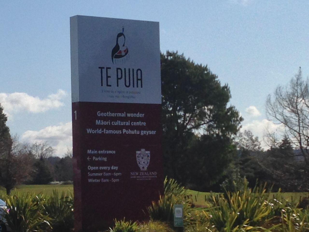 テプイア tepuia