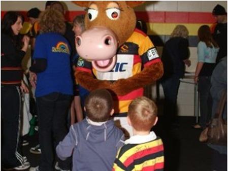 Waikato Mascot