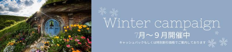Winter Campaign Banner  (1)
