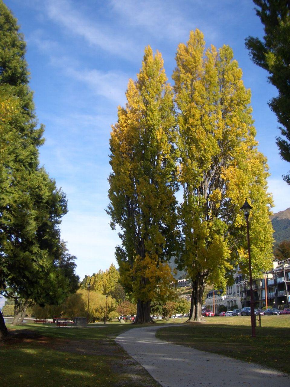 Lake Wakatipu1