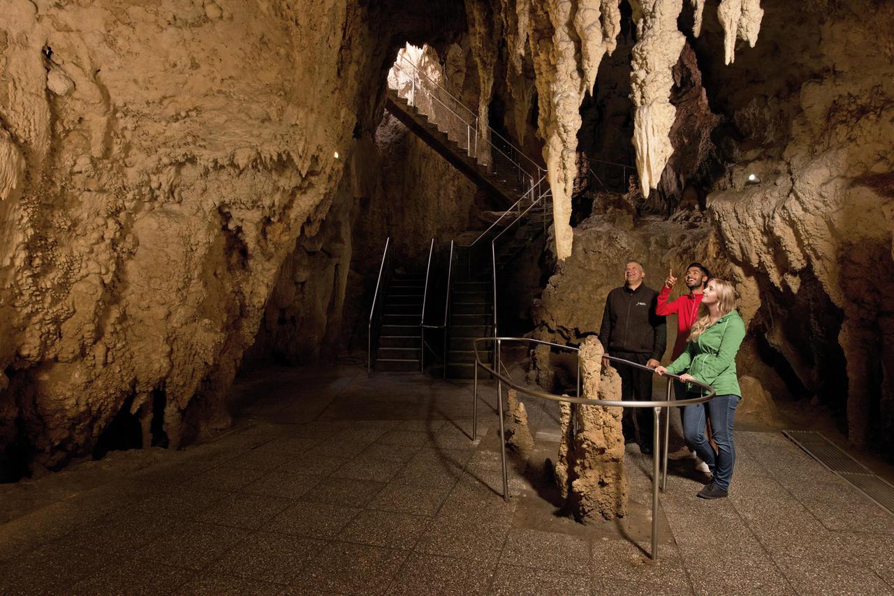 Waitomo Glowworm Caves 1516 NZ Cathedral Cave