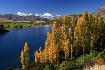 ニュージーランド セントラルオタゴ