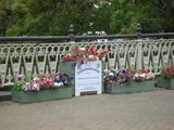 橋の上の花