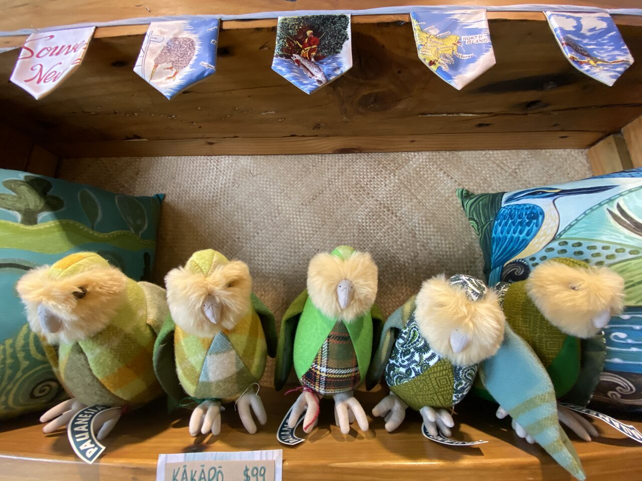 Kakapo 02
