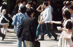 akiba1-1.jpg