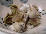 茹でつぶ貝