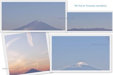 富士山と丹沢山系