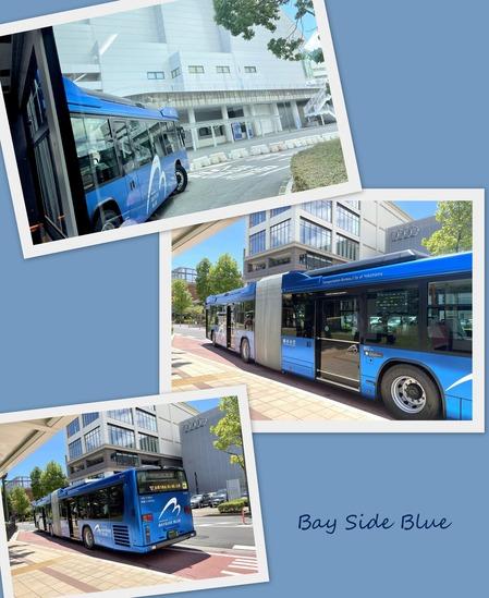 Bay Side  Blue