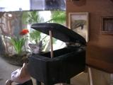 みみちゃん・ピアノ