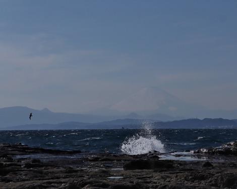 Mt.Fuji 2019.3.9