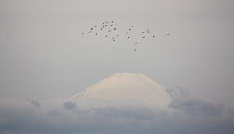 Mt.Fuji 3.30.2012