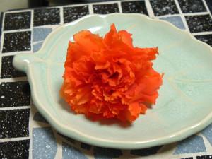 s1206カーネ(グリーン)・オレンジ