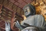 奈良の大仏の左手の平