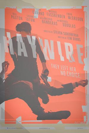 本物のアクションヒロインだけに迫力が違います!映画『ヘイワイア』海外版ポスター