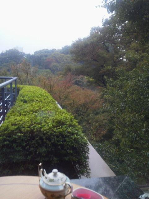 椿山荘1410212