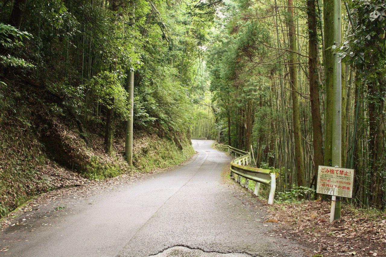 霊山 蕨野(日枝神社)から正面登山口(青年の家跡)へ : やまやま再発見