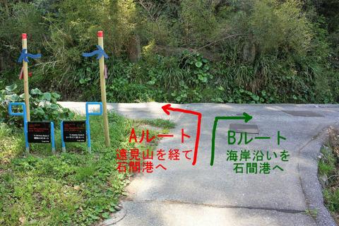 大入島 オルレコースと遠見山 (...
