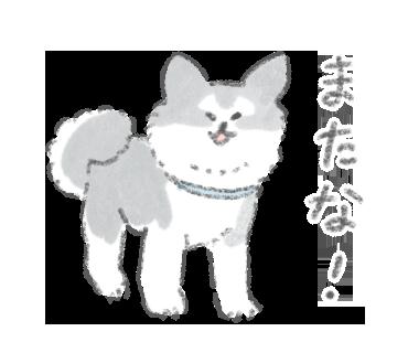 こんにちは犬ですスタンプ_0001_新規グループ