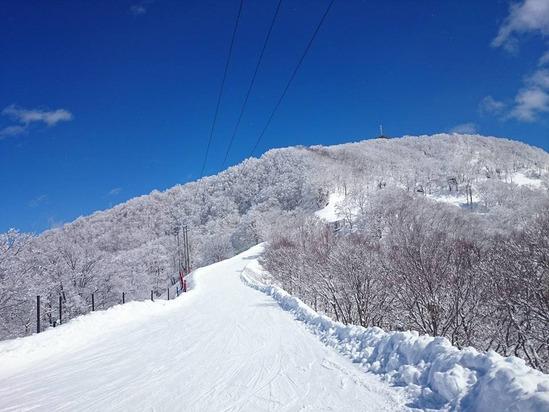 nozawa06