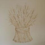 麦のステンシル