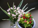 友人からのお花と