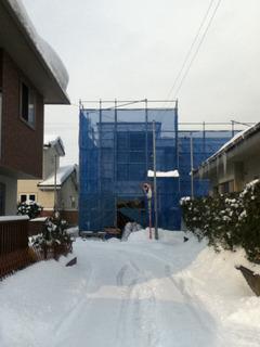 祝竣工 カメレオンハウス