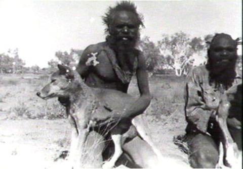 aboriginals-and-dingoes
