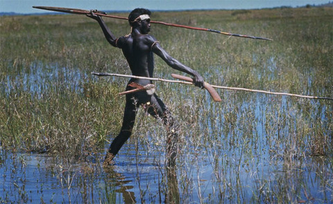 aborigine-hunting-with-a-spear