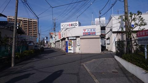 DSC_0642