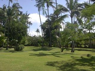 12,7,14 2日目ハイアットのお庭ゴルフ場のような芝生