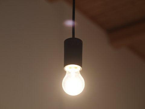 天然素材DE小さな木の家 : 裸電...