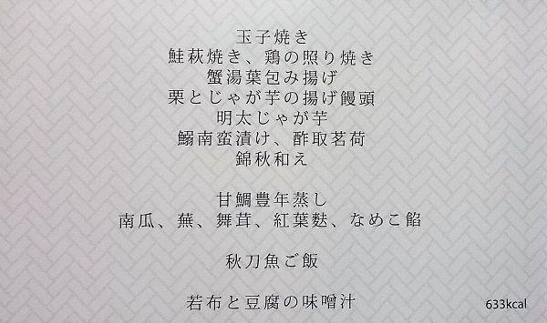 DSC_0061 (2)