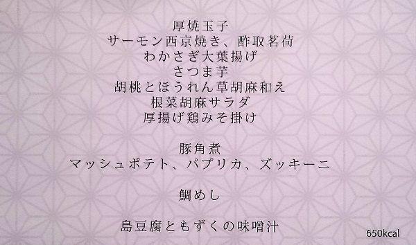 DSC_0165 (2)