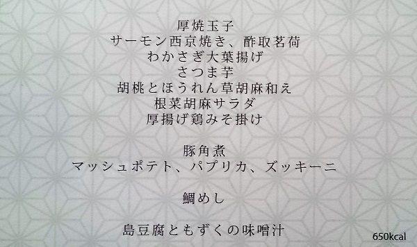 DSC_0102 (2)