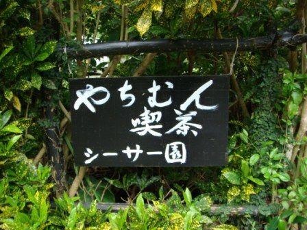 ★やちむん喫茶 シーサー園★
