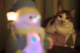 PuPu & Snowman